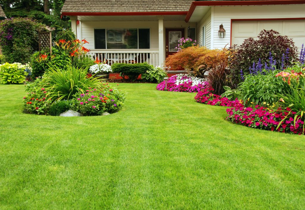 getting your lawn ready for the spring